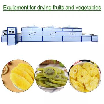 Multifunction Stainless Steel Food Grade Equipment For Drying Fruits And Vegetables ,Low Cost High Output