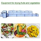 CE Certification Continuous equipment for drying fruits and vegetables,Energy Saving