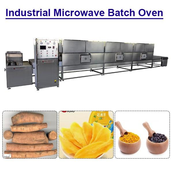 Ce Certification Hot Air Cycle Industrial Microwave Batch Oven For Drying Vegetables #1 image