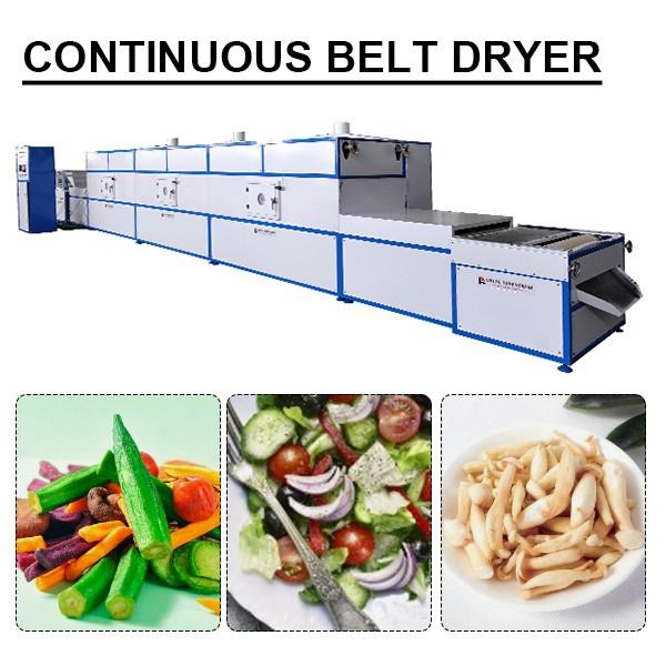 50kw Big Capacity Continuous Vacuum Dryer With Convenient Installation #1 image