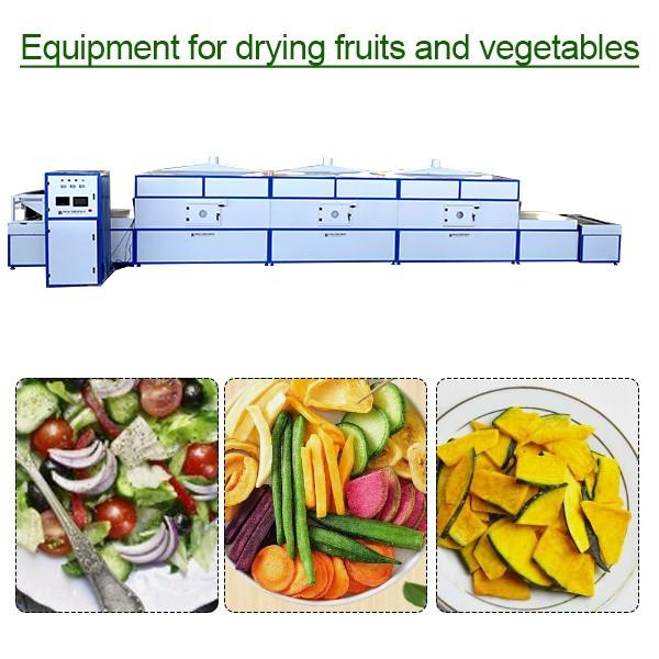 CE Certification Continuous equipment for drying fruits and vegetables,Energy Saving #1 image