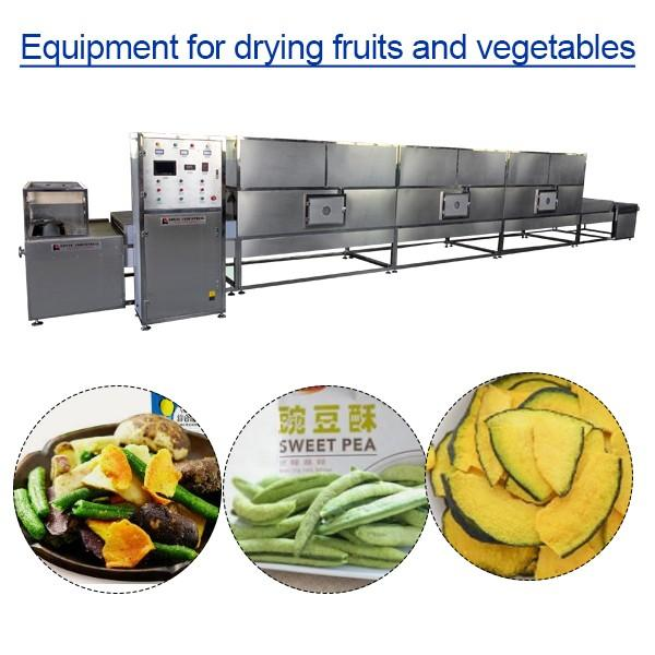 Sterilization Equipment For Drying Fruits And Vegetables With High Efficiency,Long Life Time #1 image