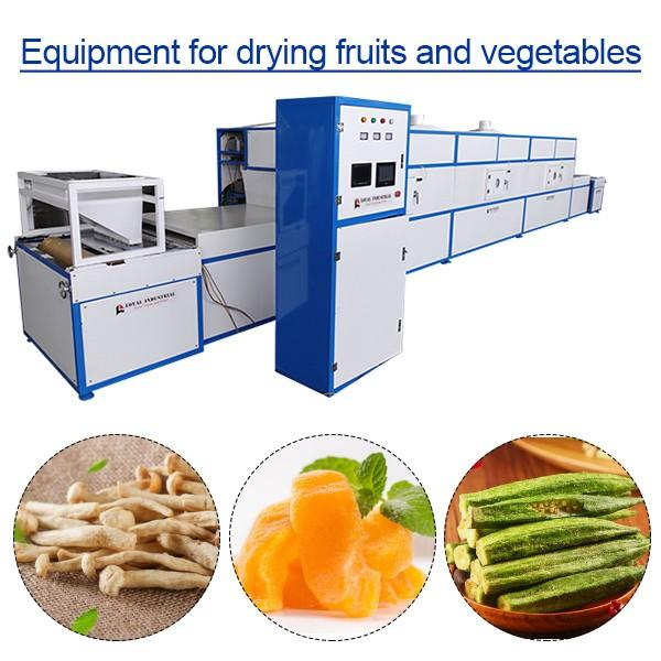 PLC Control High Productivity Equipment For Drying Fruits And Vegetables,Fruit And Veg Dryer #1 image