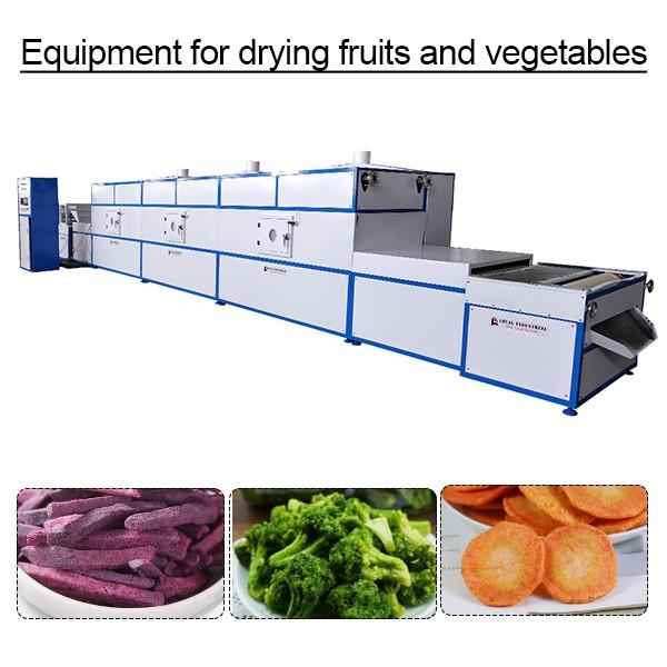 100kpa Electricity Diesel Steam Gas Automatic Equipment For Drying Fruits And Vegetables #1 image
